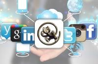 Training-Social-media-.jpg