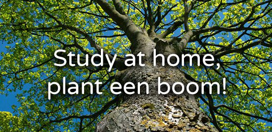 Stay at home plant een boom - trees for all