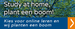 Study at home plant een boom
